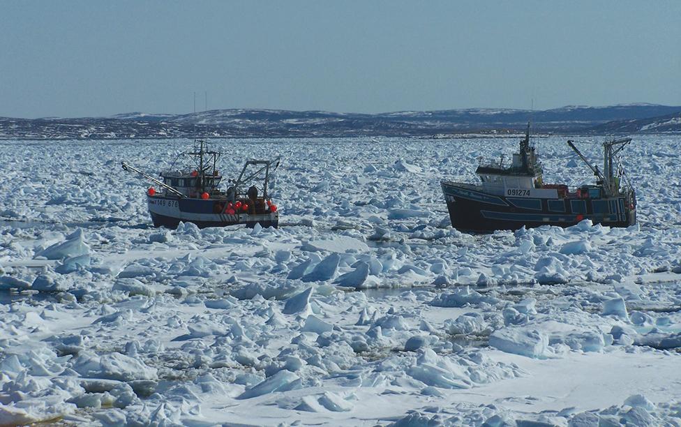 sealing-boats-Labrador-2006