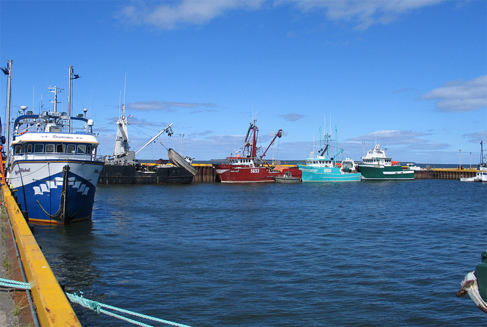 Federal Government Invests More Than $36 Million in 14 New Brunswick Harbours