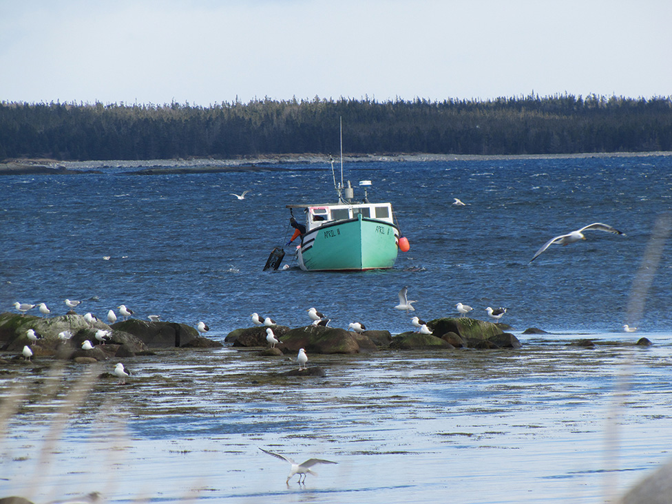Lobster Fishermen Reminded of Safety as Season Starts