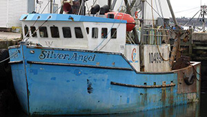 A crewmember of the Silver Angel died after falling overboard May 3, 2011 off Nova Scotia.