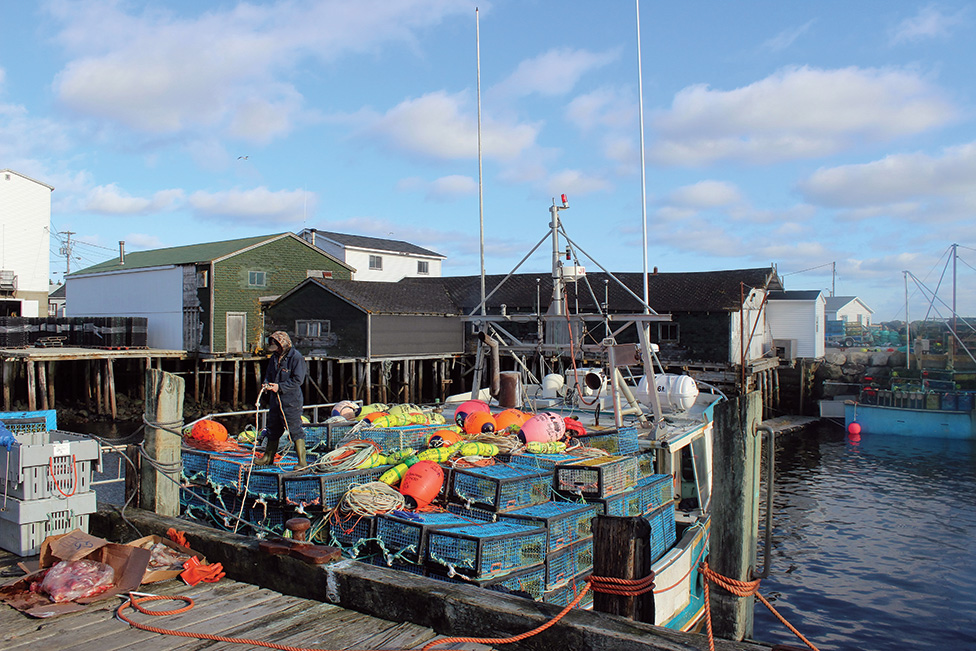 Bycatch Data Collection  Key Focus at Lobster Forum
