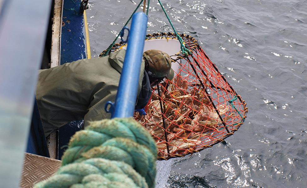 Navigator Magazine   New Entrants to Fishery Need to Meet