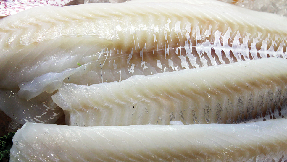 Global Whitefish Supply Will Continue to Decline in 2019
