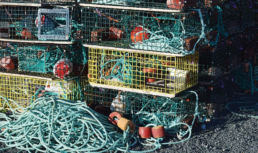 Moderate Livelihood Fishery Concerns Continue