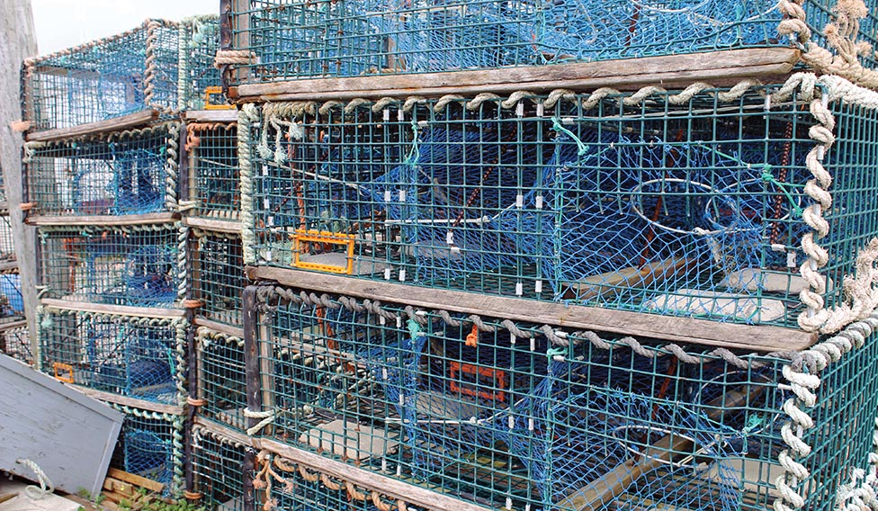 Moderate Livelihood Fishery Dispute Headed to the Courts