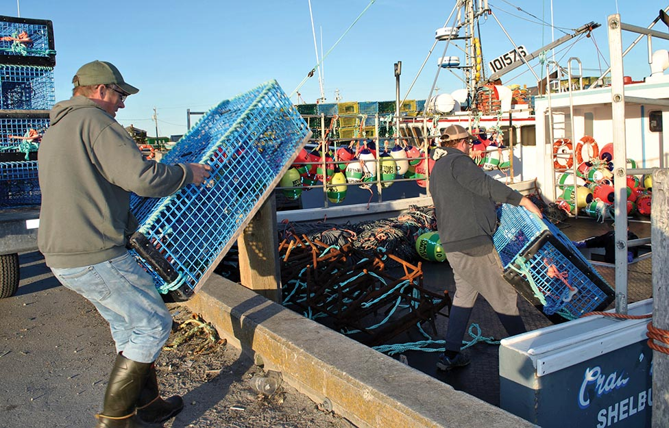 Optimism Surrounding Opening of LFA 35 Fishery