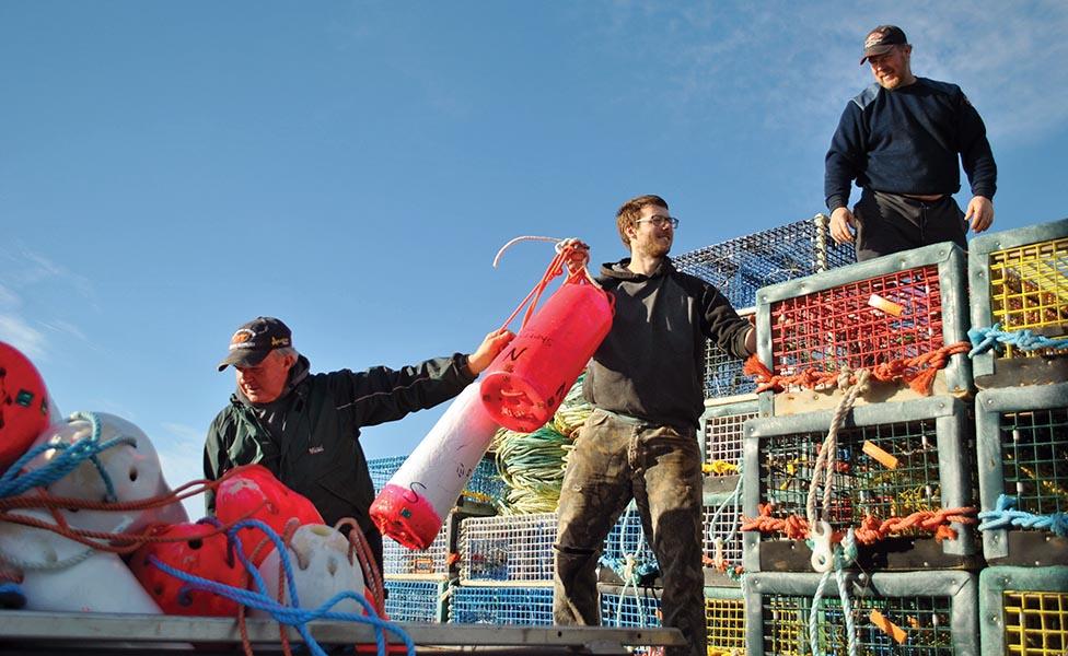 Optimistic Outlook for LFA 33/34 Lobster Season