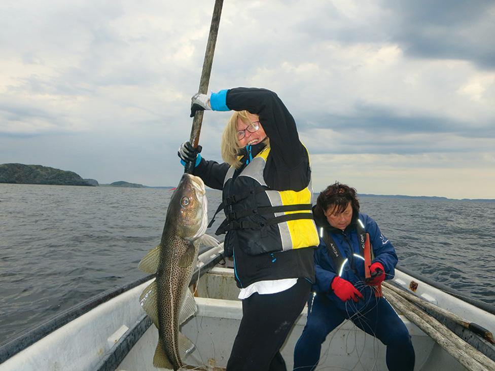 Recreational Food Fishery Nl