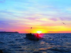 Blundon-hauling nets bdv